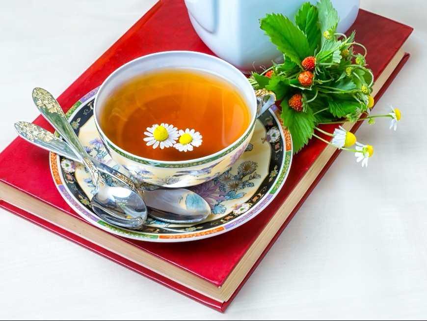 น้ำชาผลไม้อบแห้ง