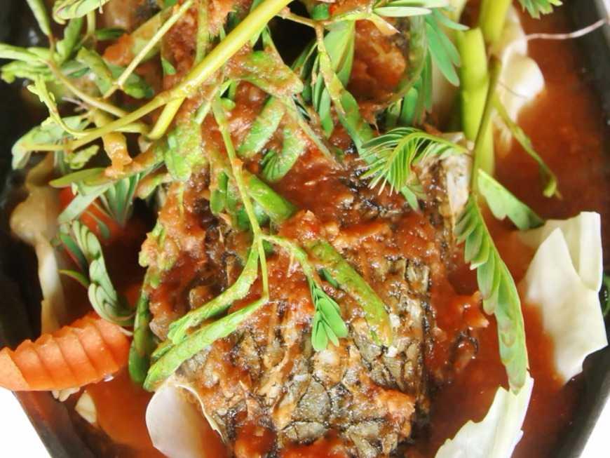 แกงส้มปลาช่อนผักกระเฉด